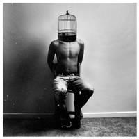 The Cage by navidsanati