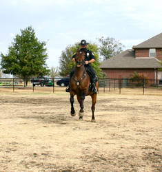 Chad making his horse rear up