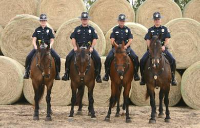 The McKinney Mounted Unit