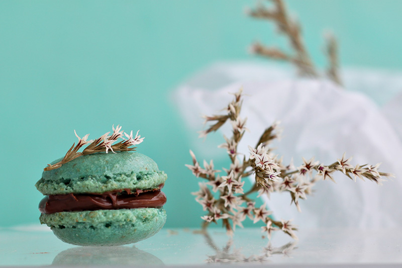 Hazelnut macarons by ~kupenska