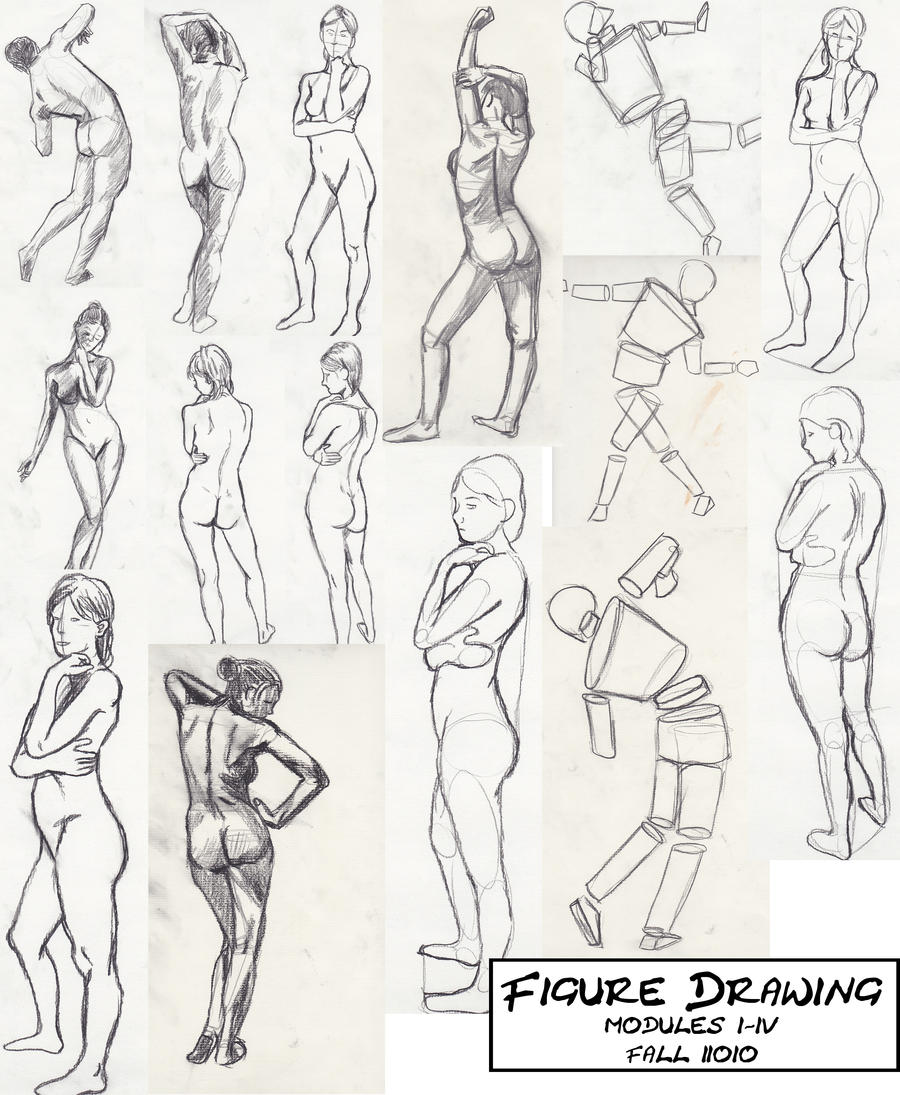 Drawing Arm Lifts : Questions about art school by sugapiessofly on deviantart