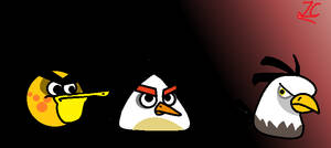 Real life pissed off angry birds