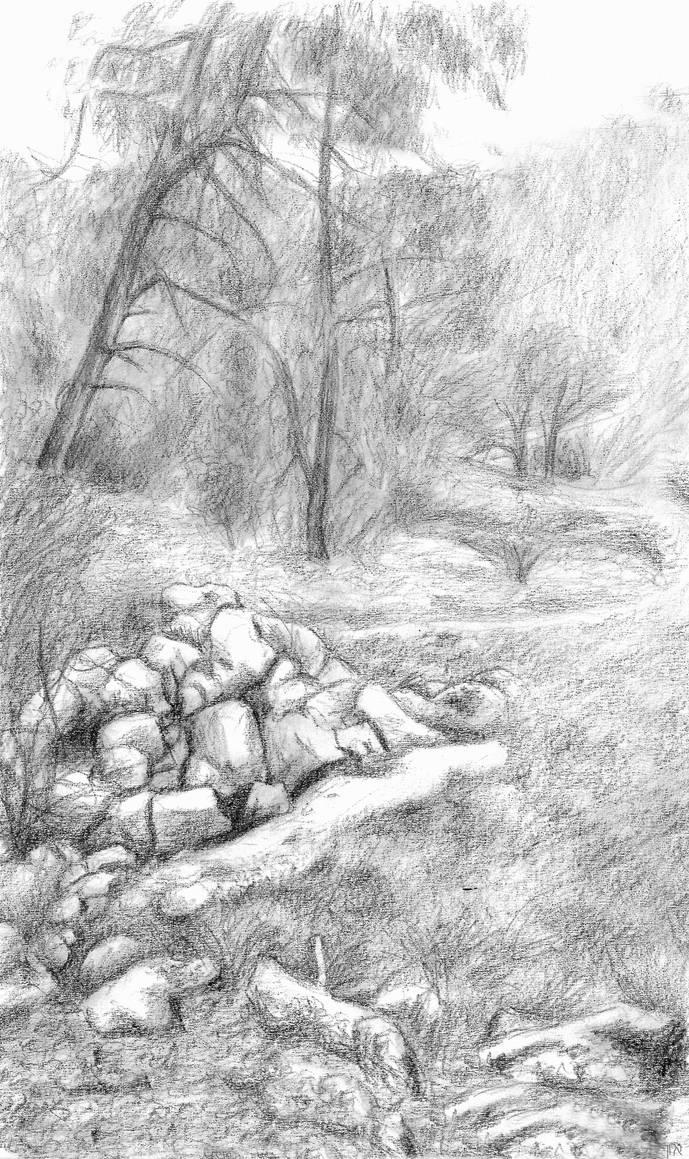 coarsegold landscape