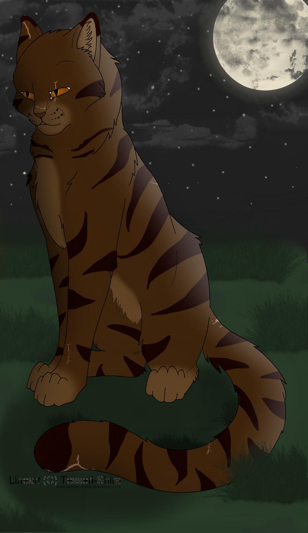 Tigerclaw by Harryn53012