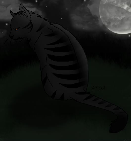 Darkstripe by Harryn53012