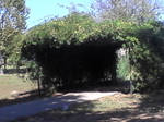 Tunnel at Shannon Springs park by littlesonic1234