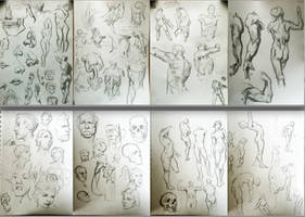 Anatomy Skill Tests by KevinMassey