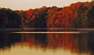 Fall Lake Stock
