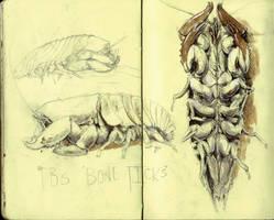 TBS Bone Ticks by zypherax