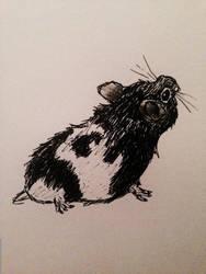 Kiwi Sketch by cookiefur