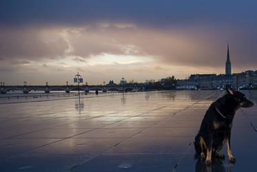 Docks at dawn 03