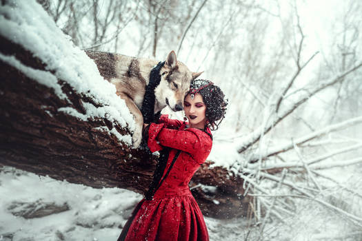 Red Riding Hood #5