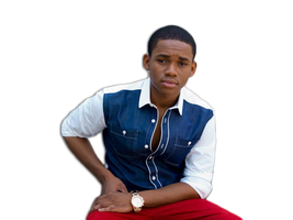 Doc Shaw png
