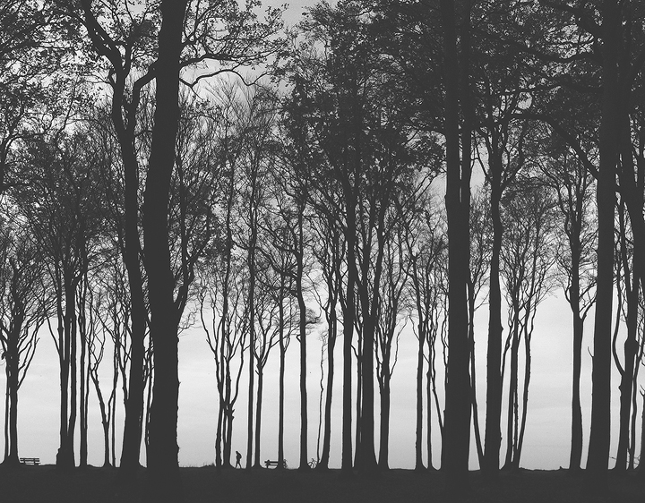 Gespensterwald by Gehoersturz