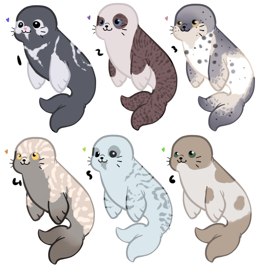 Seal Adopts by AxesAdopts