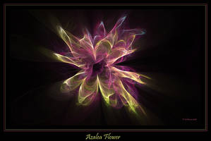 Azalea Flower by Szellorozsa