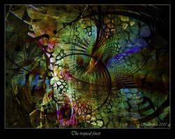 The tropical forest by Szellorozsa