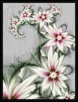 <b>Flower Poetry</b><br><i>Szellorozsa</i>