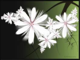 Winter blooming
