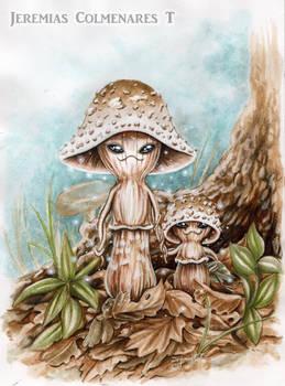 Enchanted Mushroom