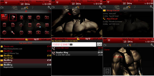 Digital Stipper Theme for Blackberry 9900  os7