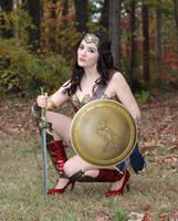 Wonder Woman_04 by hyuugahinata-stock