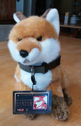 Fox at LSF9 by RakuenGrowlithe
