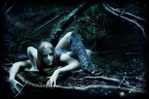 ..as darkness falls by PAtScHWOrK