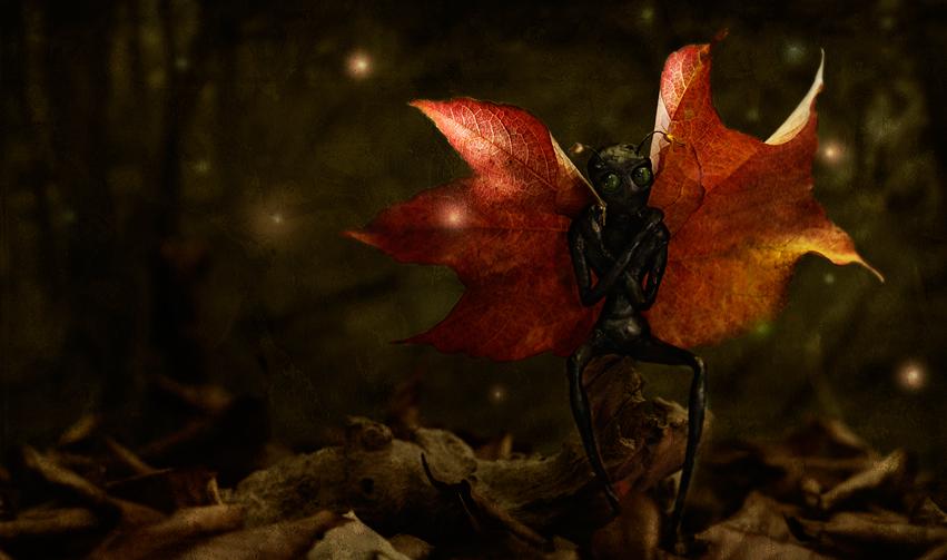 Herbstling by PAtScHWOrK