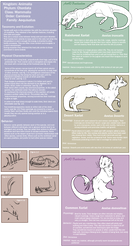 Xariat Species Sheet