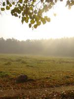 Stock 179: sunrise field by AlzirrSwanheartStock