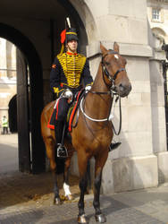 Stock 250: London horse guard by AlzirrSwanheartStock