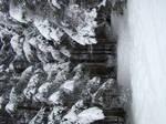 Stock 355: winter trees 5 by AlzirrSwanheartStock