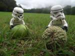 LEGO: Harvest Time