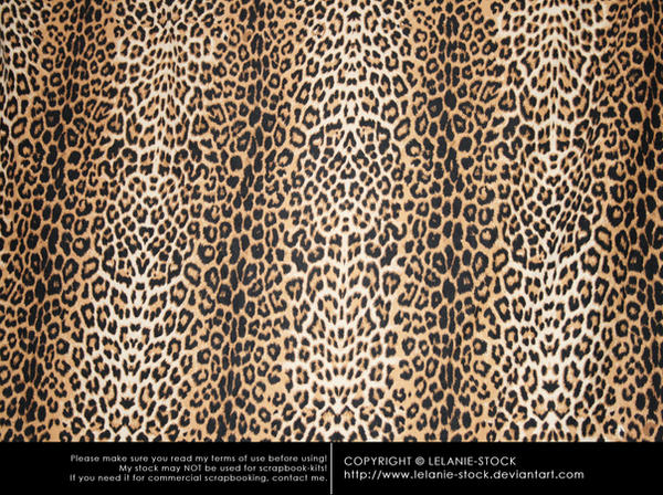 Texture African 002 by Lelanie-Stock
