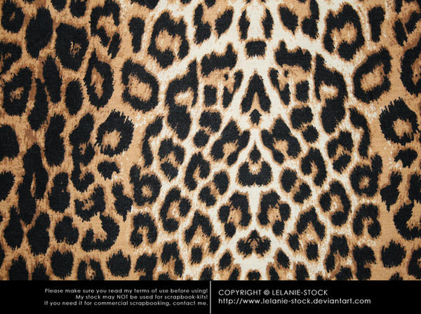 Texture African 003 by Lelanie-Stock