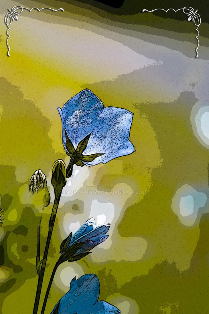Flowers by nmmarkowa