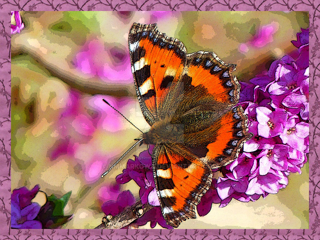 Butterfly3 by nmmarkowa