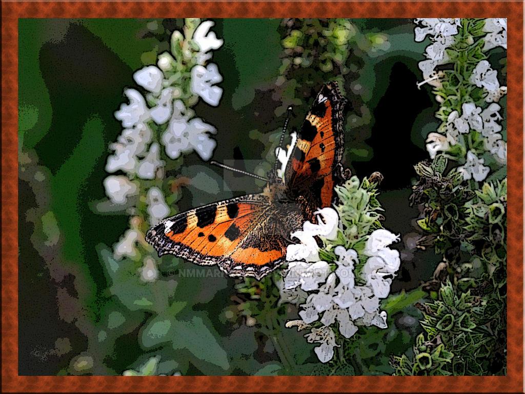 Butterfly5 by nmmarkowa