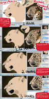 Realistic Leopard Tutorial