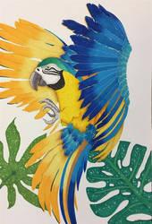 Parrot by Kananiii