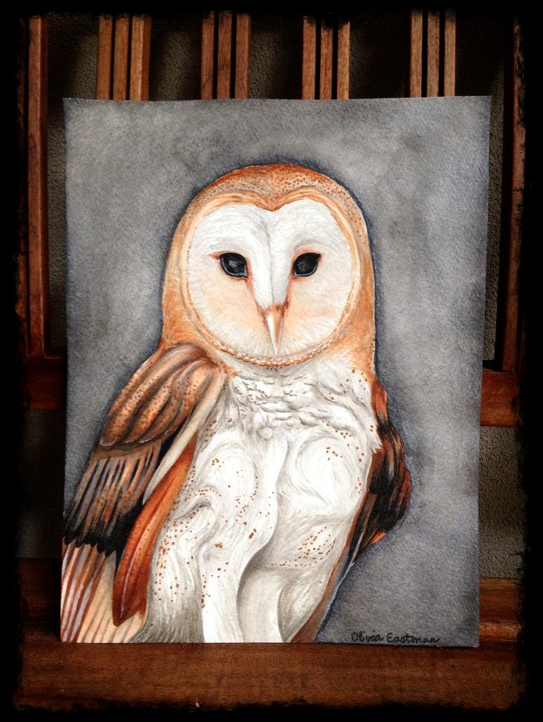 Owl drawing by OliviaNub