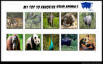 Top 10 Favourite Asian Animals