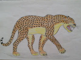Animal Arts - Leopard by EddyBite87