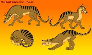 The Last Thylacine - Tyson