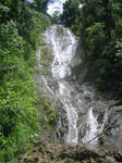 Waterfall Within the Jungle