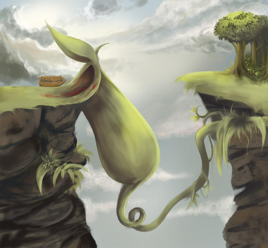 Pitcher plant drawing - photo#22