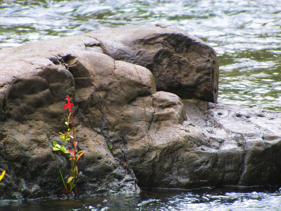 Broken bow lake ok 9 by katykempf on deviantart for Broken bow lake fishing