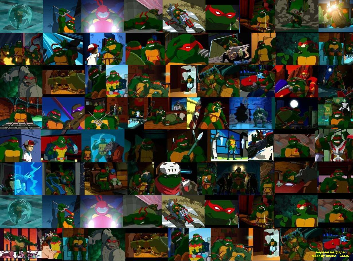 Displaying 16 gt images for tmnt raphael 2007