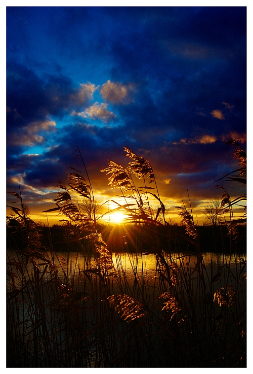 pin golden sunset hd - photo #12